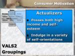 consumer motivation33
