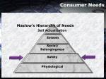 consumer needs13