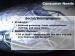 consumer needs16