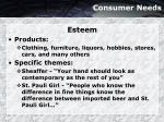 consumer needs18