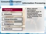 consumer perception information processing