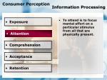 consumer perception information processing79