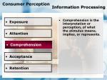 consumer perception information processing80
