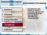 consumer perception information processing81