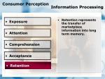 consumer perception information processing82