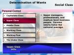 determination of wants social class67
