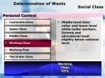 determination of wants social class69