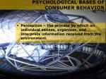psychological bases of consumer behavior