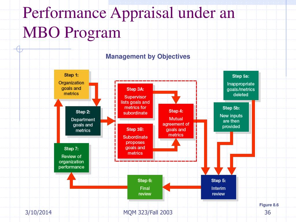 Performance Appraisal under an MBO Program