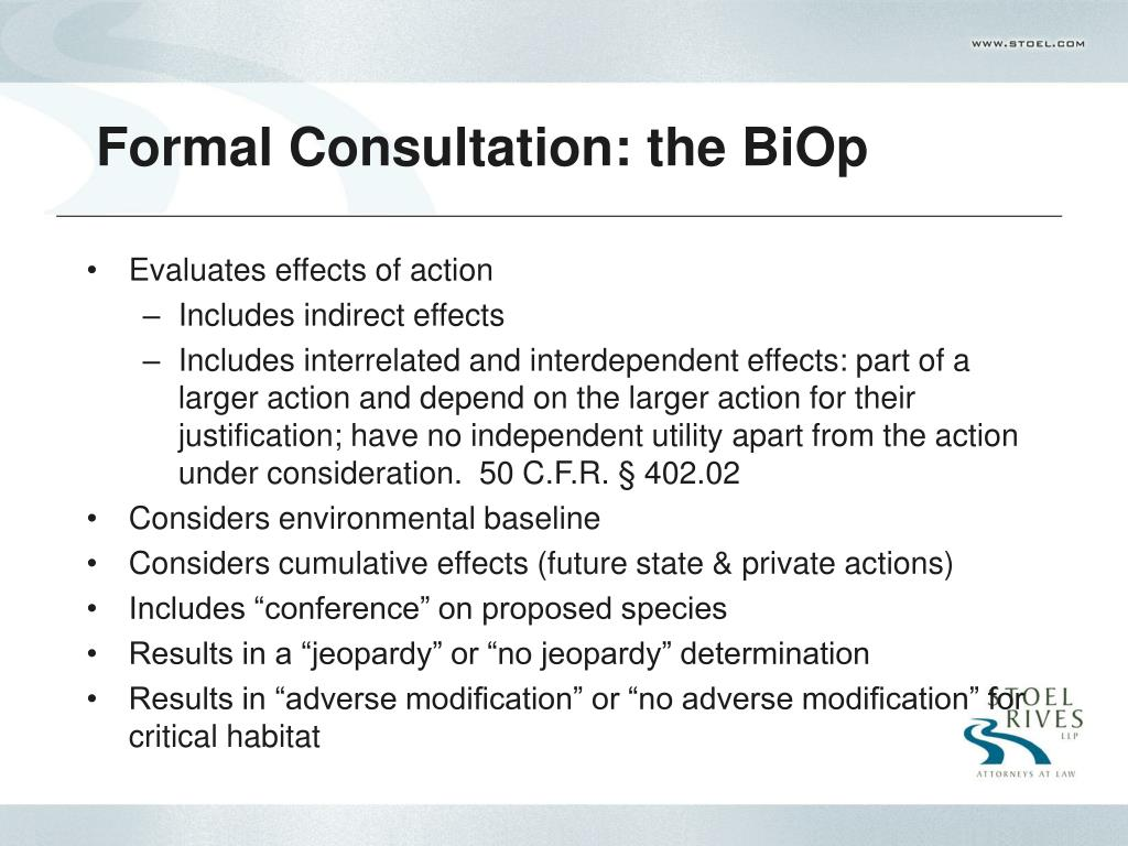 Formal Consultation: the BiOp