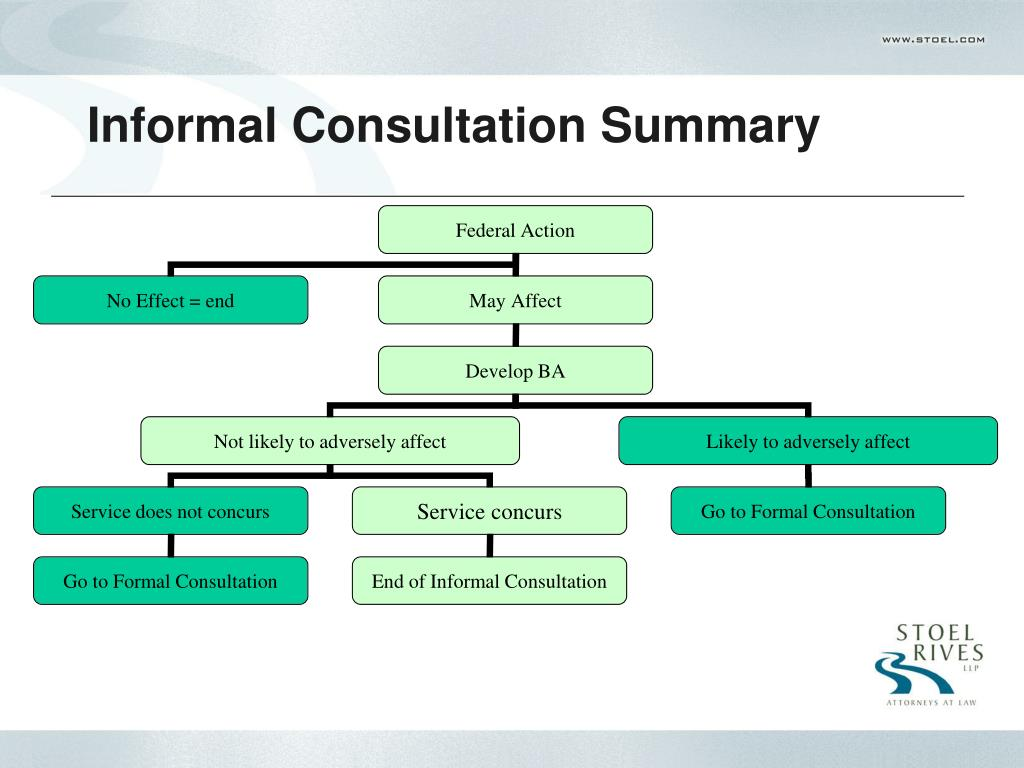 Informal Consultation Summary