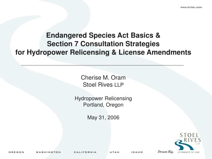 Endangered Species Act Basics &