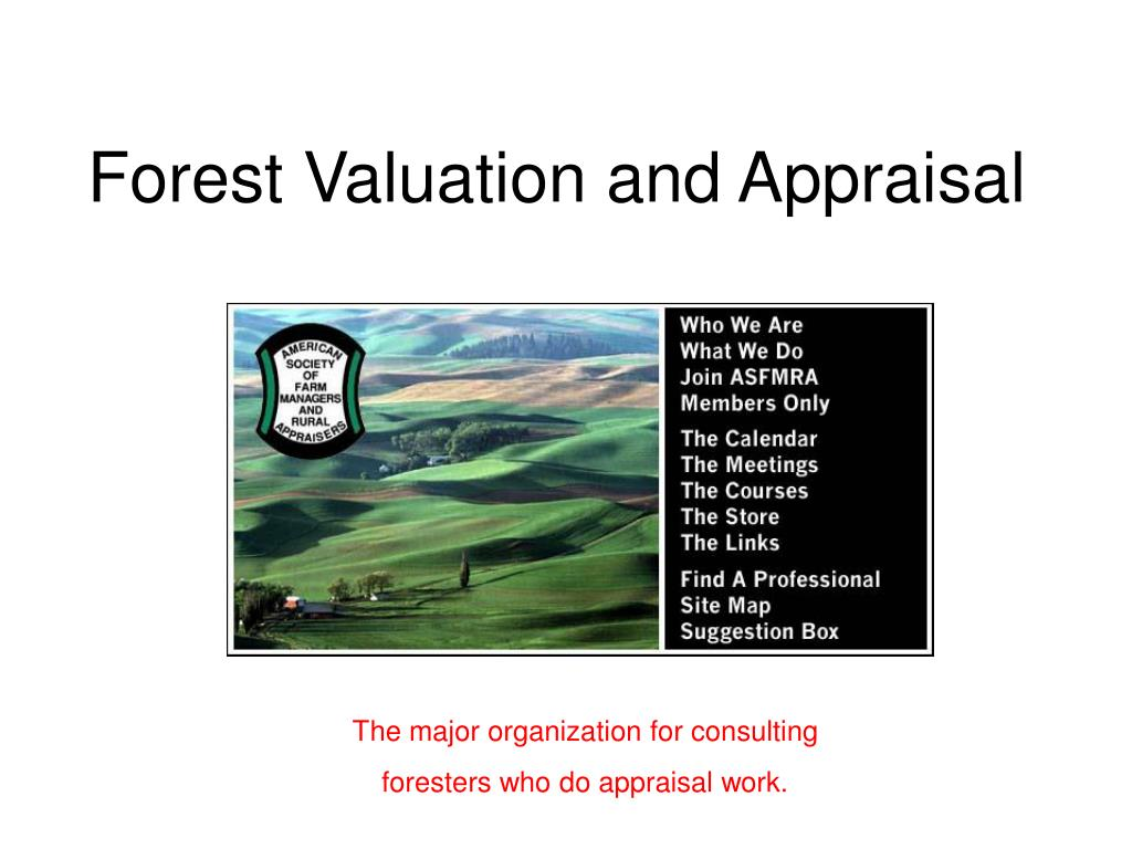 forest valuation and appraisal l.