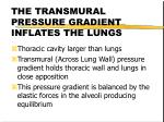 the transmural pressure gradient inflates the lungs