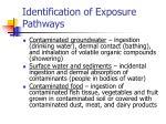 identification of exposure pathways