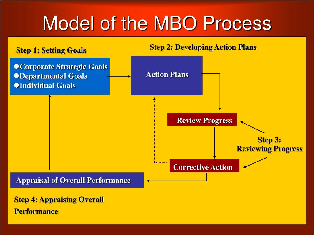 model of the mbo process l.