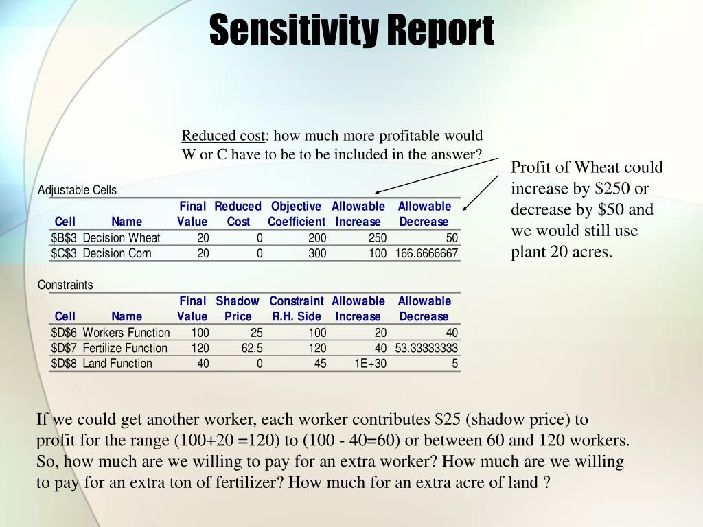 Sensitivity Report