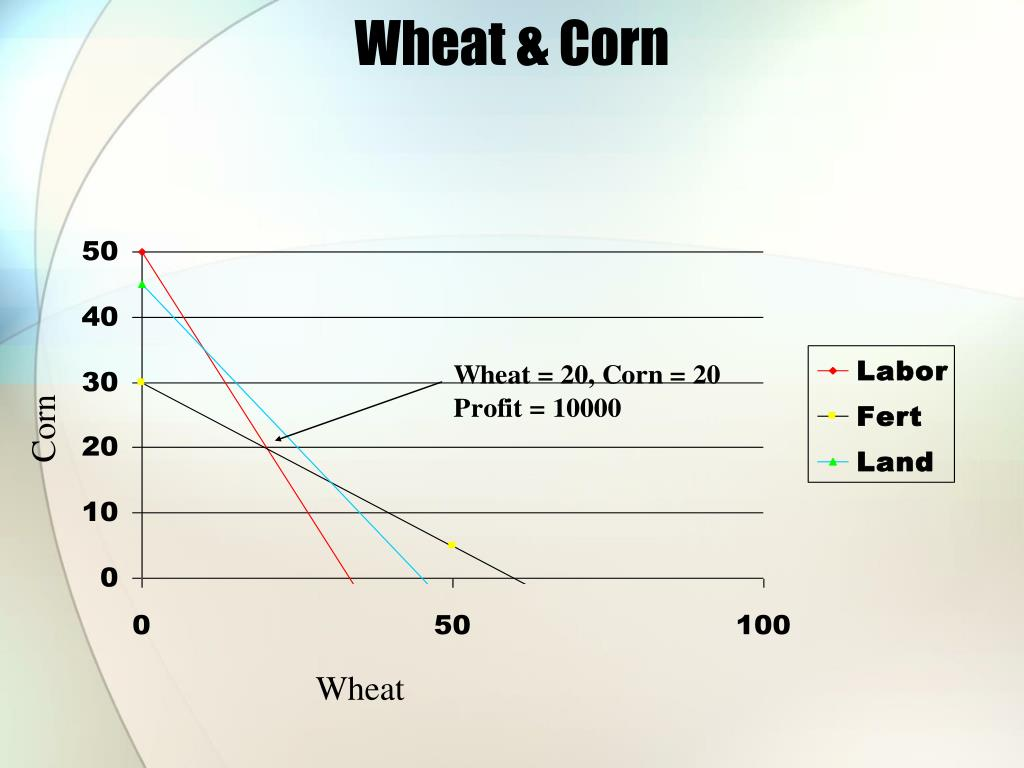 Wheat & Corn