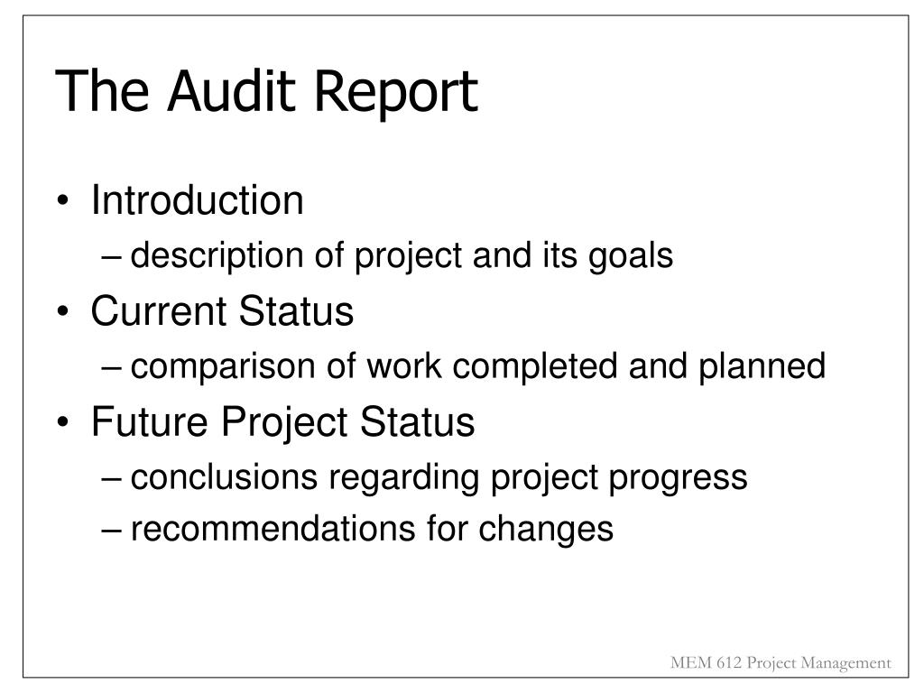 The Audit Report
