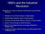 1800 s and the industrial revolution4