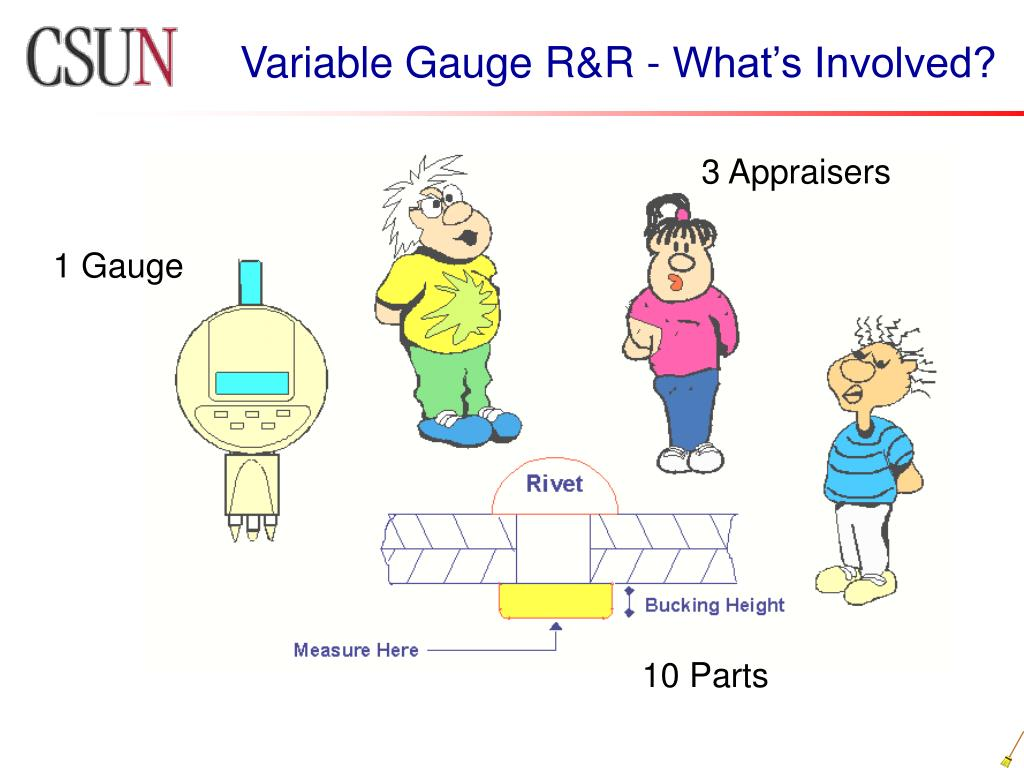 Variable Gauge R&R - What's Involved?