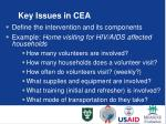 key issues in cea