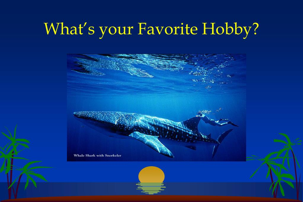 What's your Favorite Hobby?