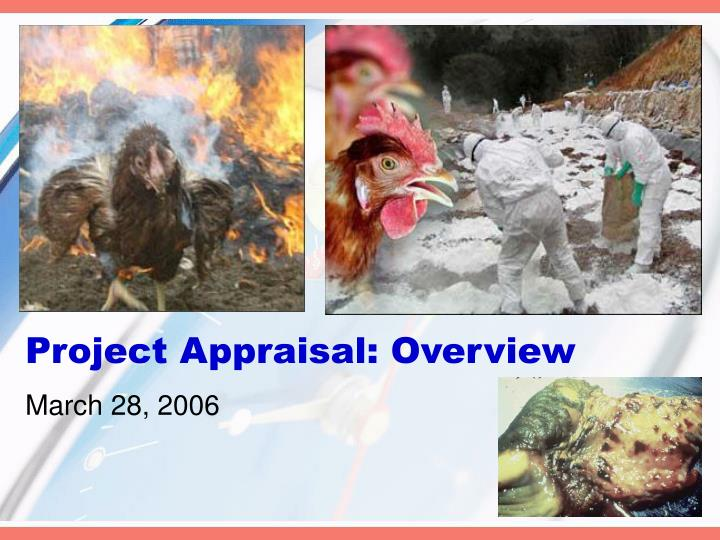 project appraisal overview n.