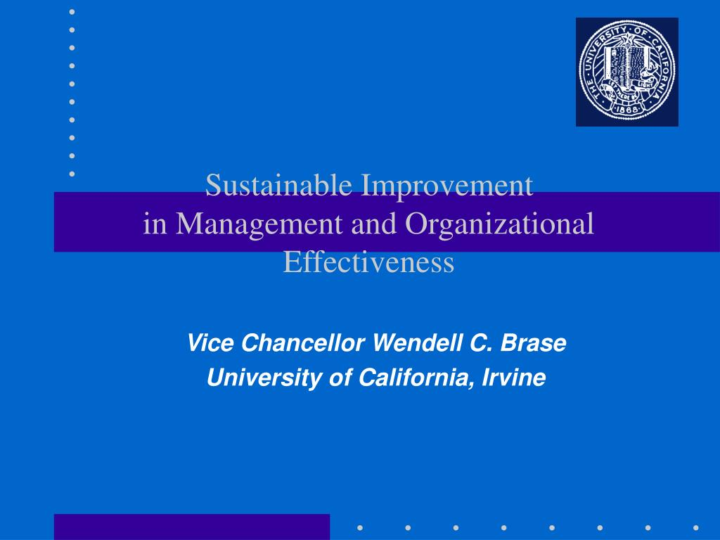 sustainable improvement in management and organizational effectiveness l.