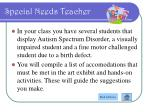 special needs teacher