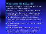 what does the sscc do