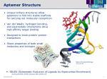 aptamer structure