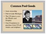 common pool goods