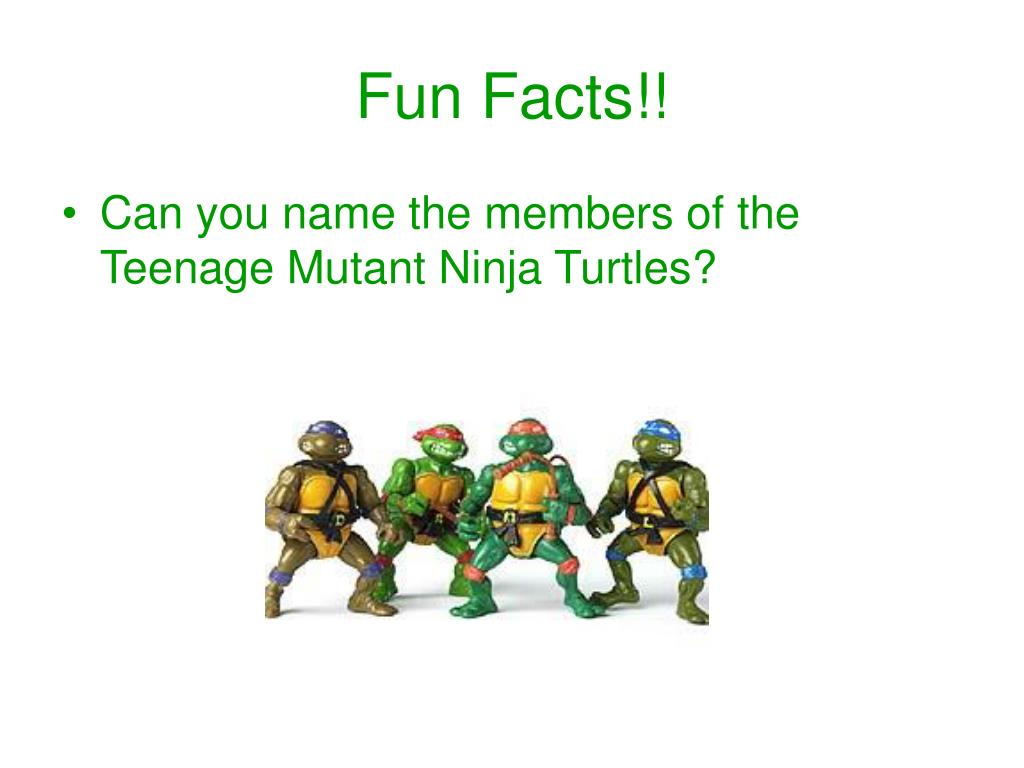 fun facts l.