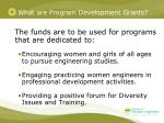 what are program development grants