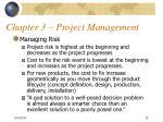 chapter 3 project management28