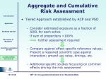aggregate and cumulative risk assessment21