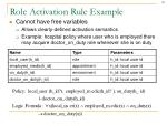 role activation rule example