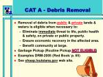 cat a debris removal