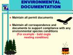 environmental documentation