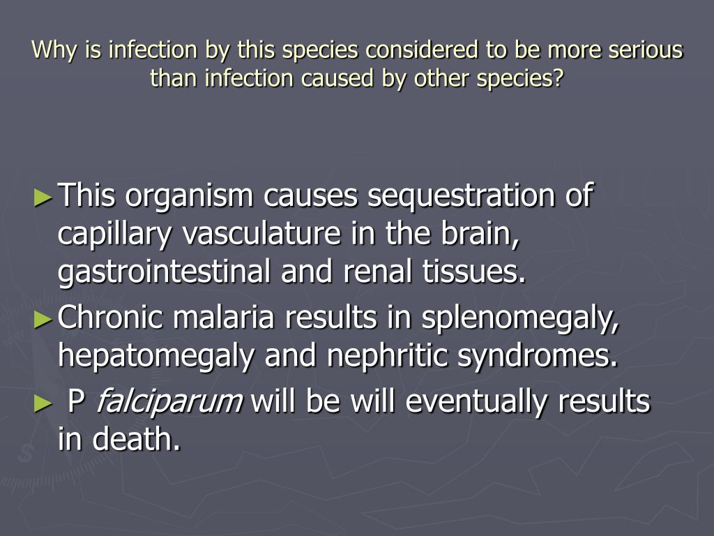 Why is infection by this species considered to be more serious than infection caused by other species?