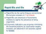 rapid bis and eis