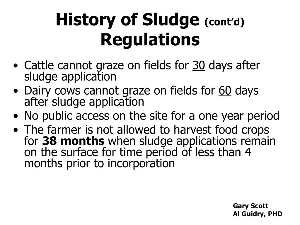 History of Sludge