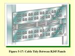 figure 5 17 cable tidy between rj45 panels