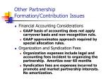 other partnership formation contribution issues29
