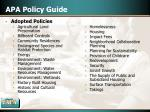 apa policy guide
