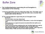 buffer zone39