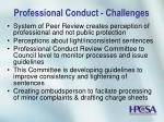 professional conduct challenges