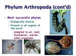phylum arthropoda cont d