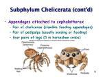 subphylum chelicerata cont d18
